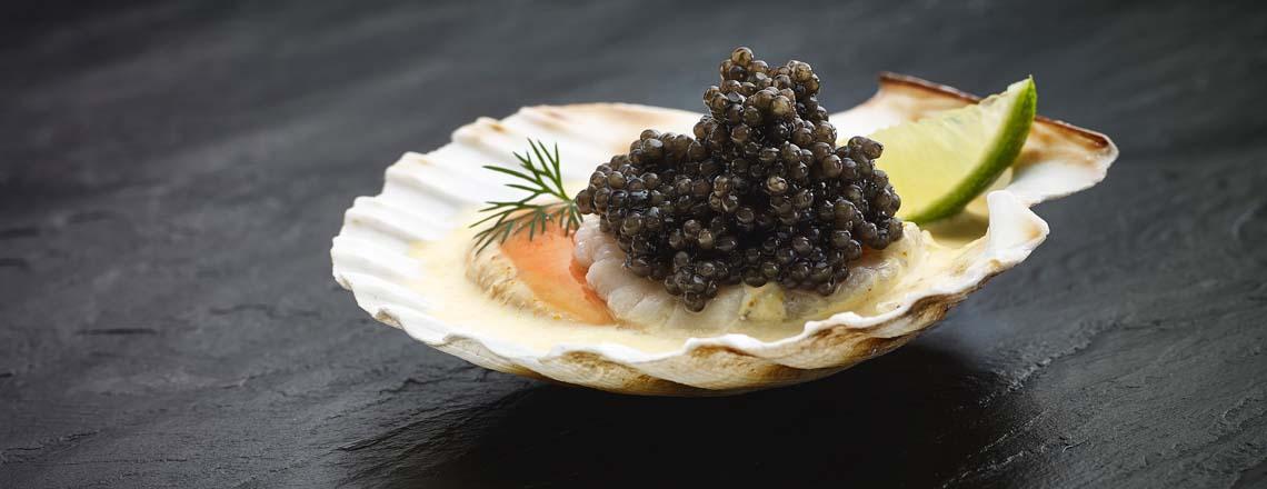 caviar in a sea shell dish