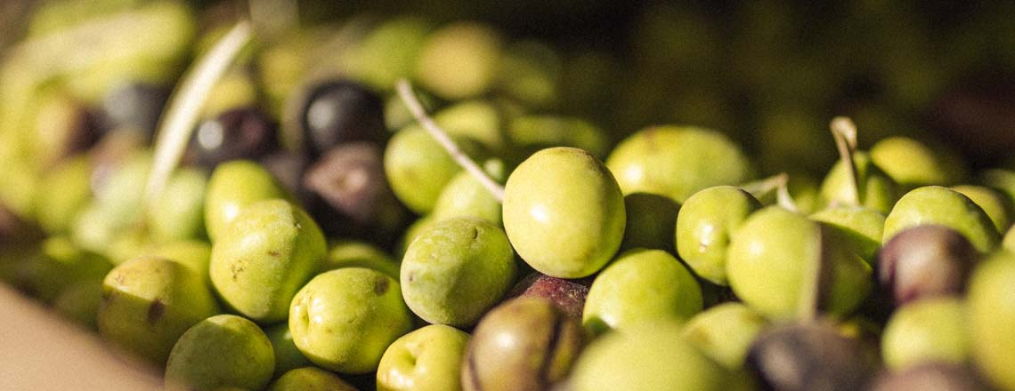 Close up of olives in a bowl